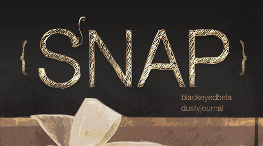 Banner for Snap